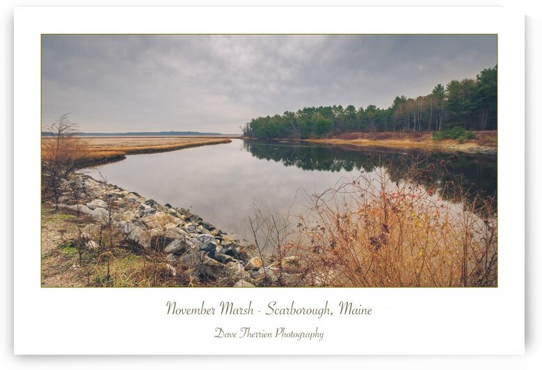 November Marsh by Dave Therrien