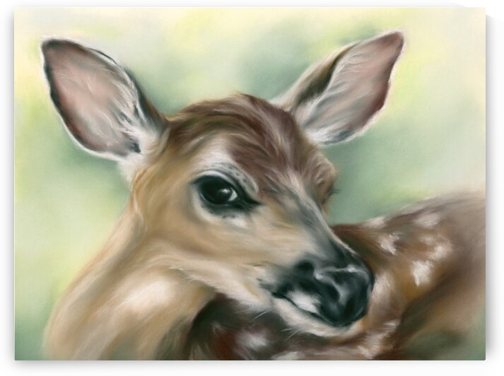 Young Fawn on Green Deer Portrait by MM Anderson