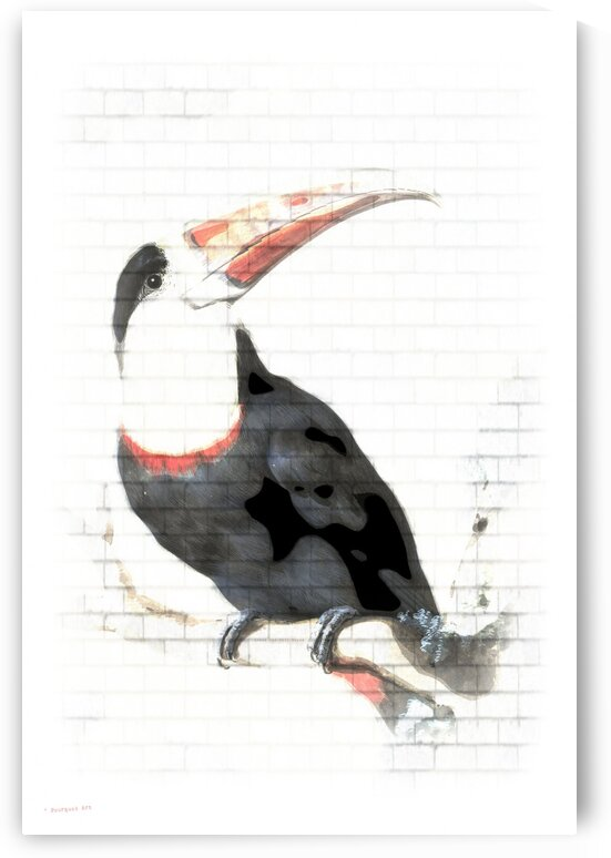 Red-Billed Toucan Wall Graffiti  by pourquoi art