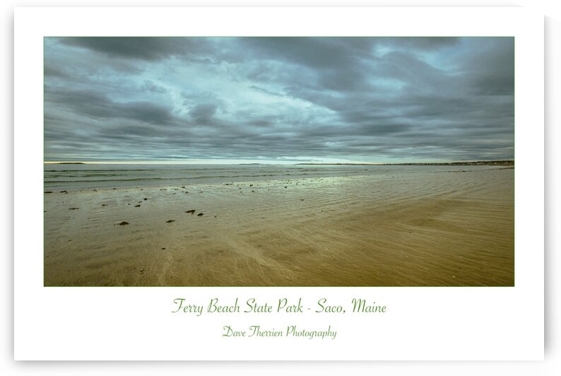 Ferry Beach State Park by Dave Therrien