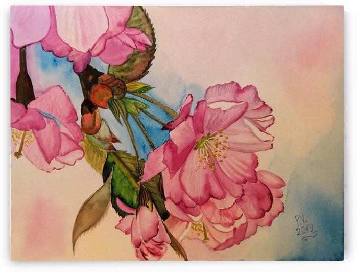 Sakura by Valentyna Pylypenko