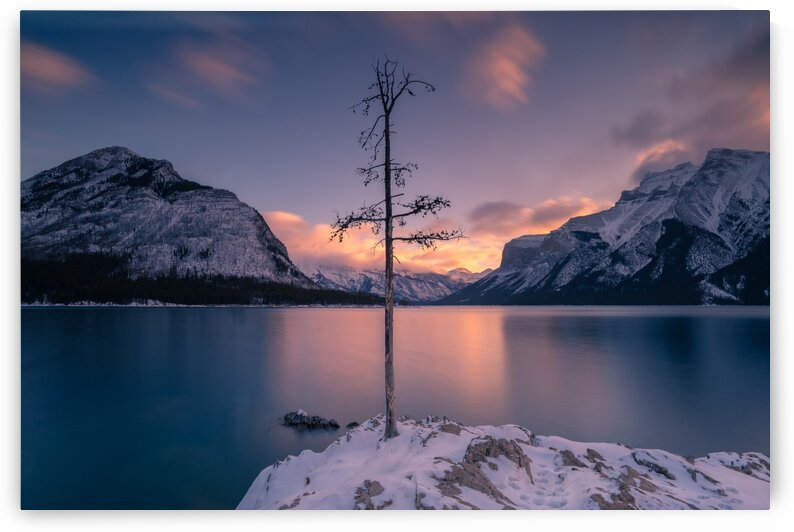 Lone Tree Lake Minnewanka Banff Canada by Michael Ozimko