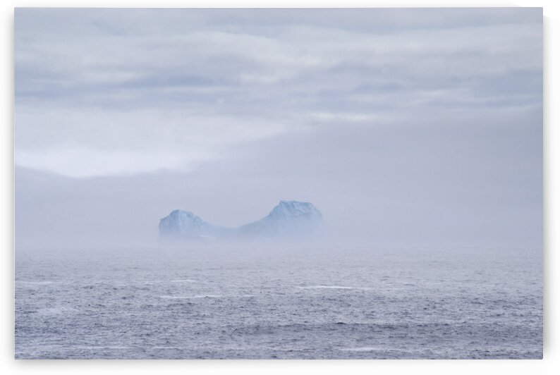 out of the fog by David J Tilley