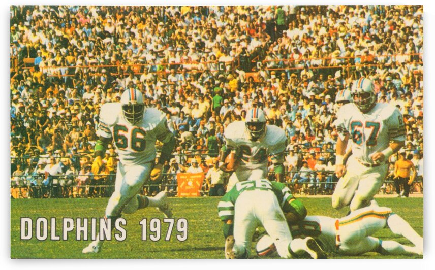 1979 Miami Dolphins Art by Row One Brand