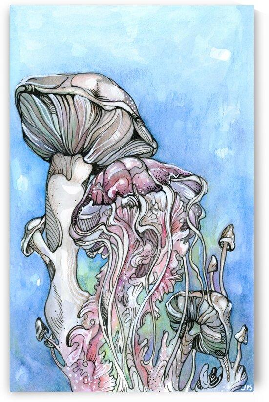 Mushrooms & Jellyfish by Jasmine Pearl Schut