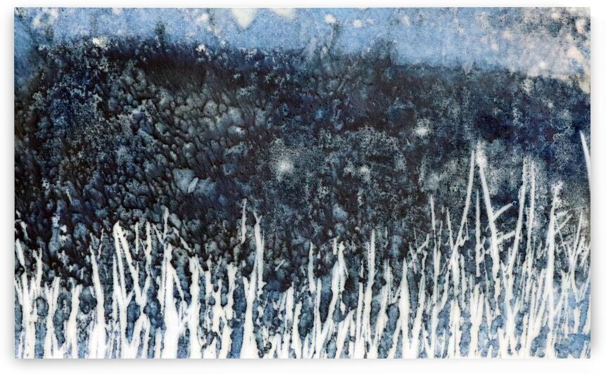 Meadow in the night by Robert P Art