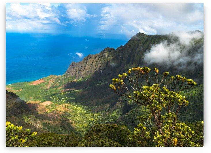 Kalalau Lookout by BCALI