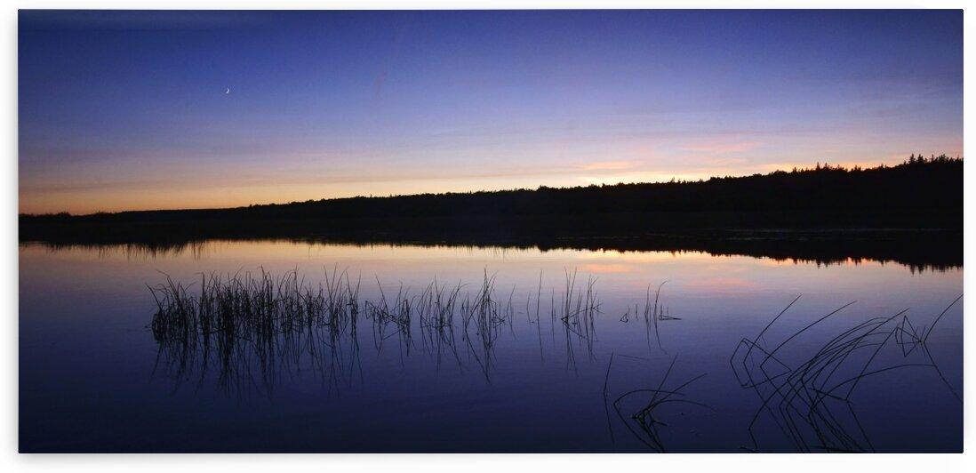 serenity by David J Tilley