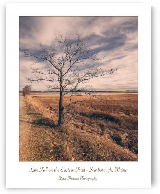 Late Fall on the Eastern Trail by Dave Therrien