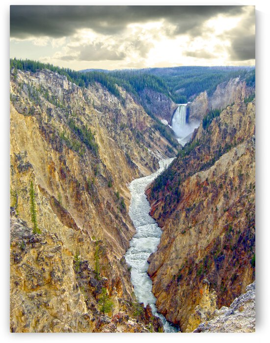 Mighty Yellowstone 5 - Grand Canyon of the Yellowstone River - Yellowstone National Park by 360 Studios
