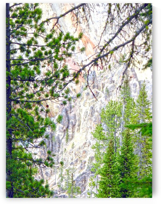 Mighty Yellowstone 4 - Grand Canyon of the Yellowstone River - Yellowstone National Park by 360 Studios