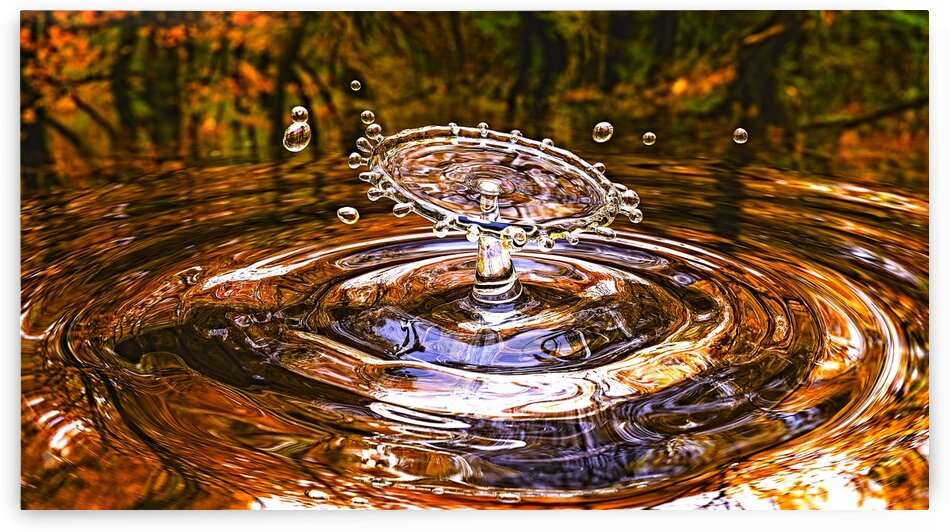 Water Drop Autumn_OSG by One Simple Gallery
