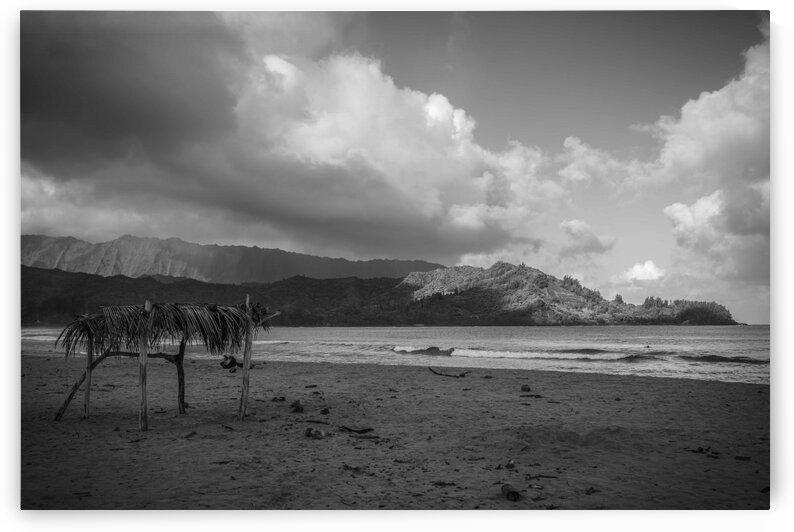 Hanalei Beach View by BCALI