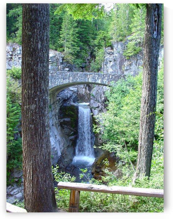 Christine Falls at Mount Rainier Pacific Northwest by 360 Studios