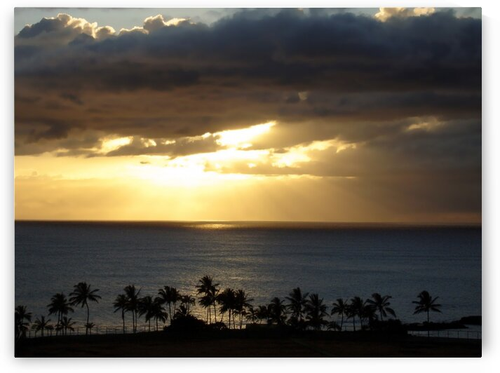 Hawaii Blues by 360 Studios