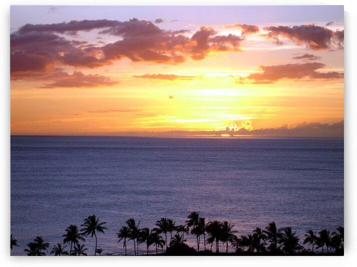 Golden Hawaii by 360 Studios