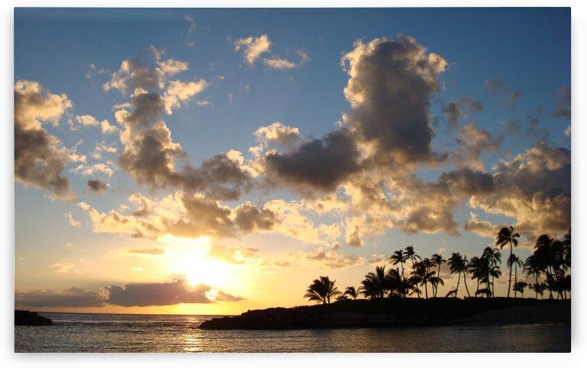 Blue Skies Hawaii by 360 Studios