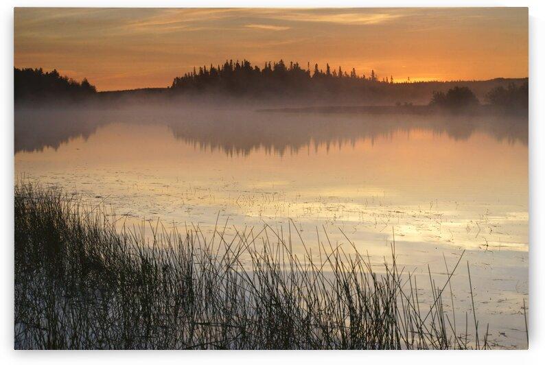 morning glow by David J Tilley