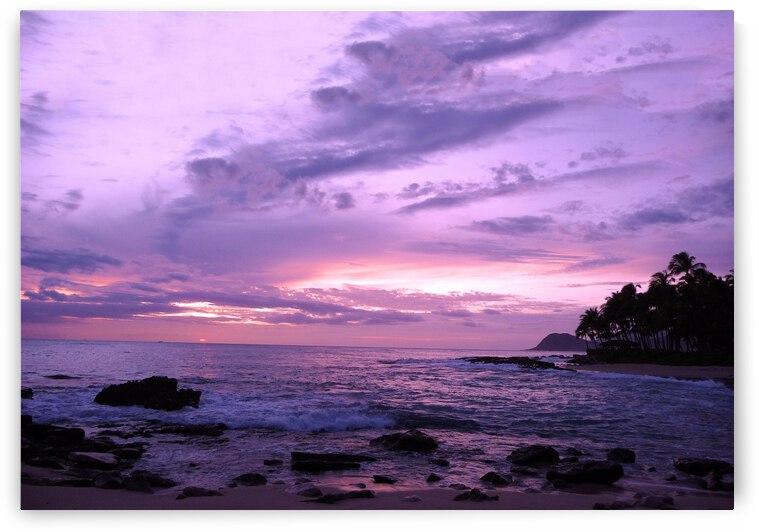 Purple Skies Over Hawaii by 360 Studios