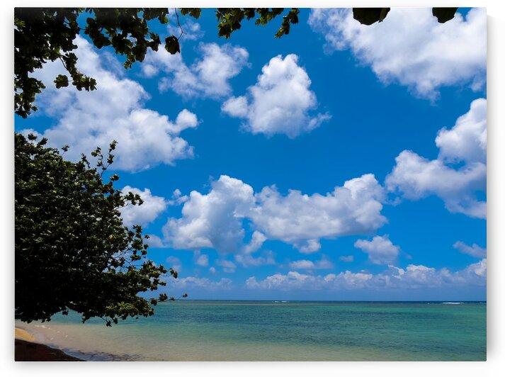 Turquoise Waters & Blue Skies by 360 Studios