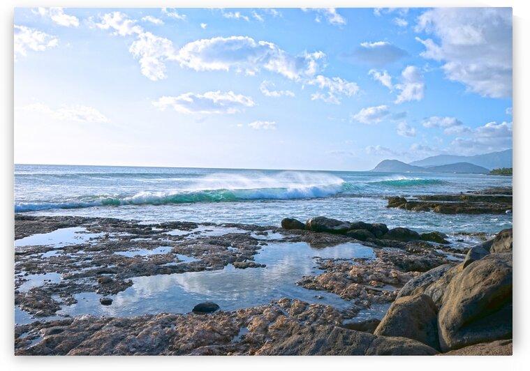 Aloha by 360 Studios