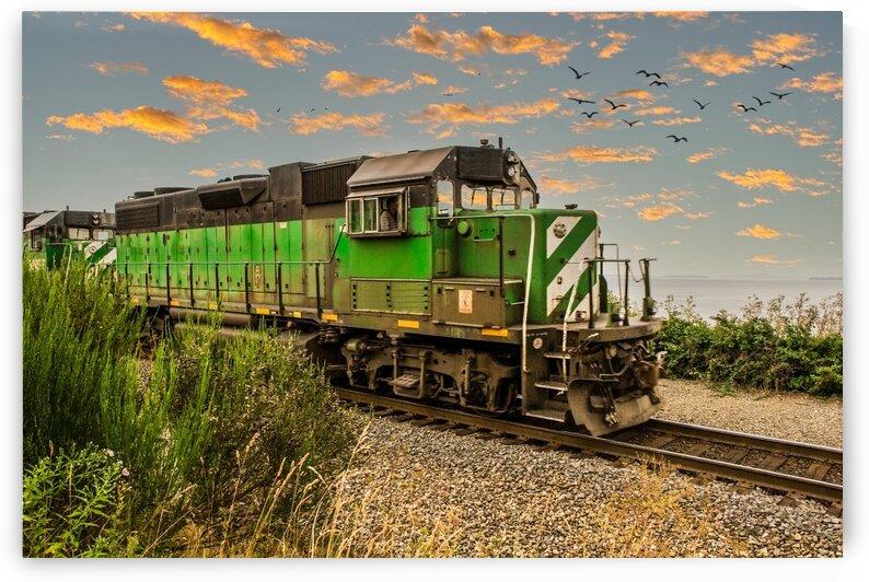 Burlington Northern Train on Edge of Sea by Darryl Brooks