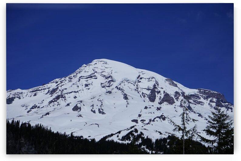 Mount Rainier by 360 Studios