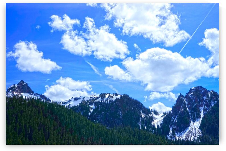 In the Cascade Mountains by 360 Studios