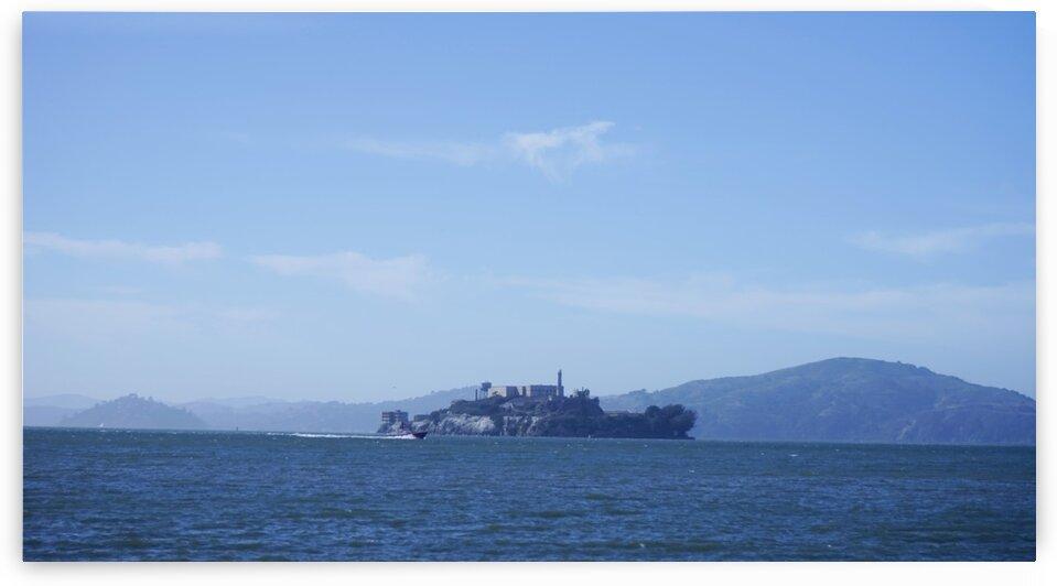 Elusive Alcatraz by 24