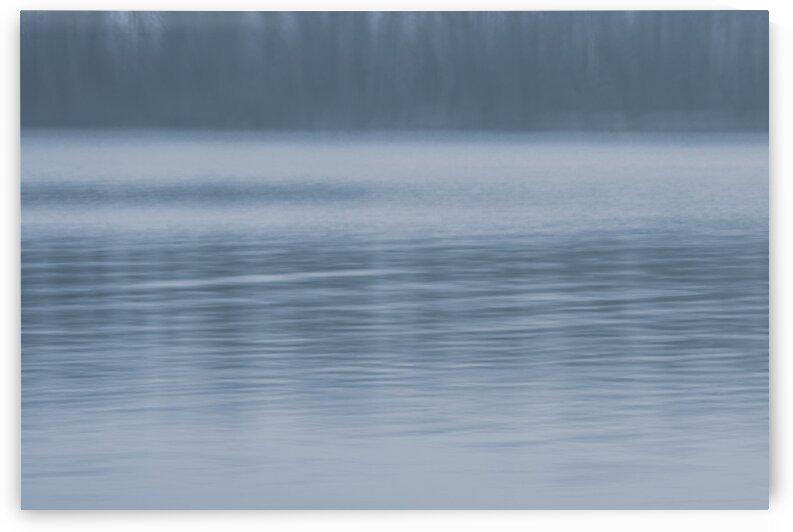autumn morning by Oksana Demianets