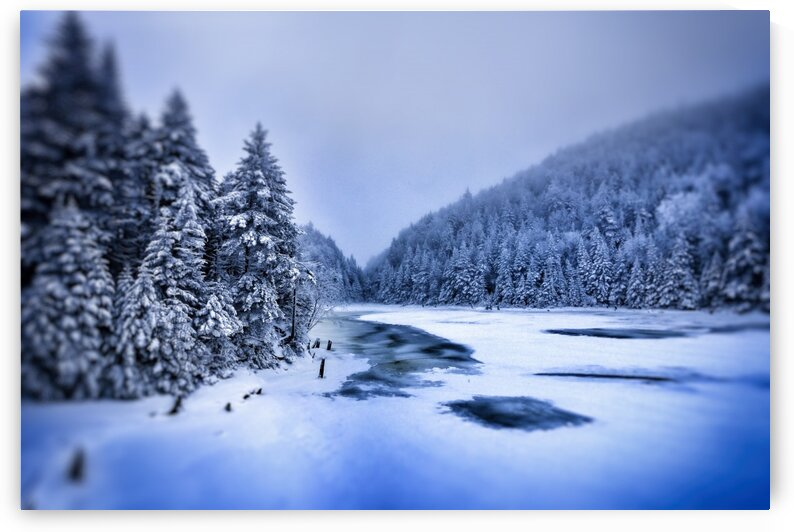Winter in Canada by Jacques Frenette