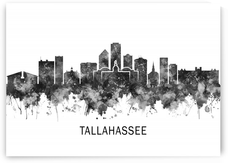 Tallahassee Florida Skyline BW by Towseef Dar