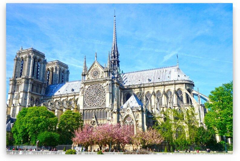 Notre Dame @ Paris by 1North