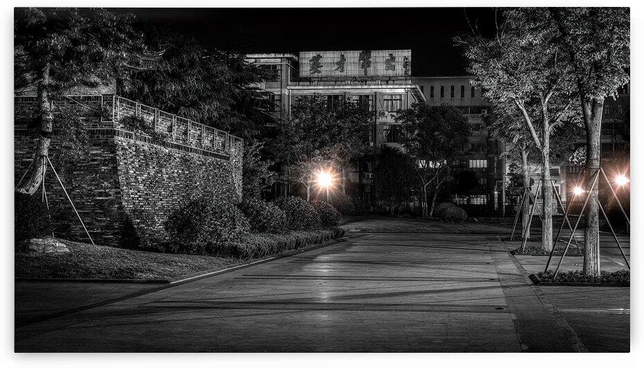 Night City Park Nantong China | 2015-4-NAN-NCP-2 by Vlad Meytin