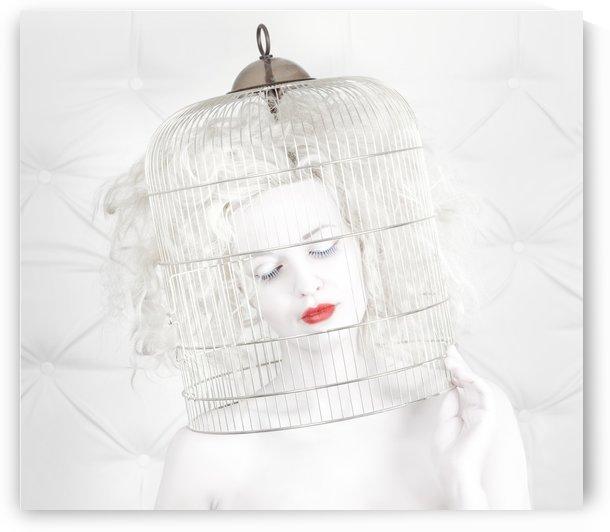 birdcage love by 1x