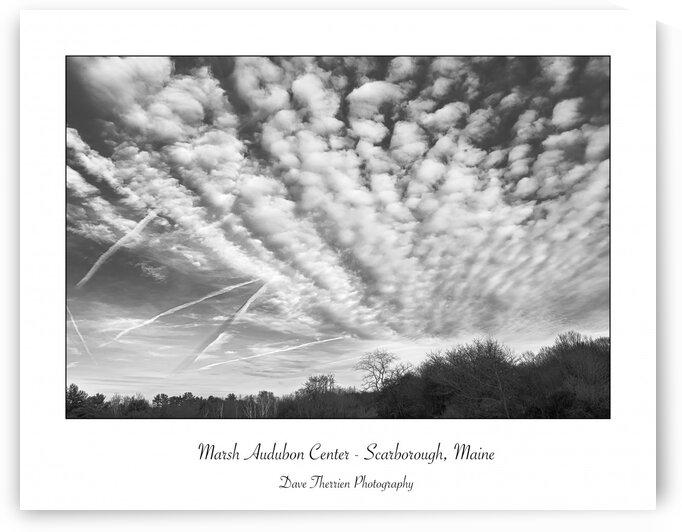 Marsh Audubon Center by Dave Therrien