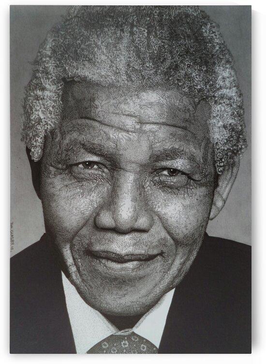 NELSON MANDELA by Tim Glasby