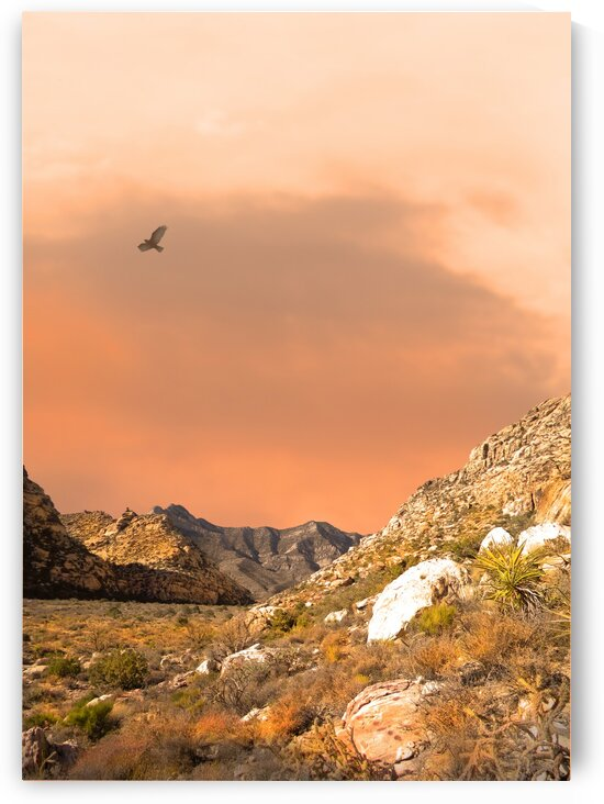 Desert and Mountains by Frank Wilson