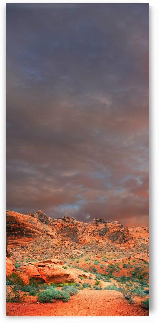 Desert Hiking Among The Sandstones by Frank Wilson