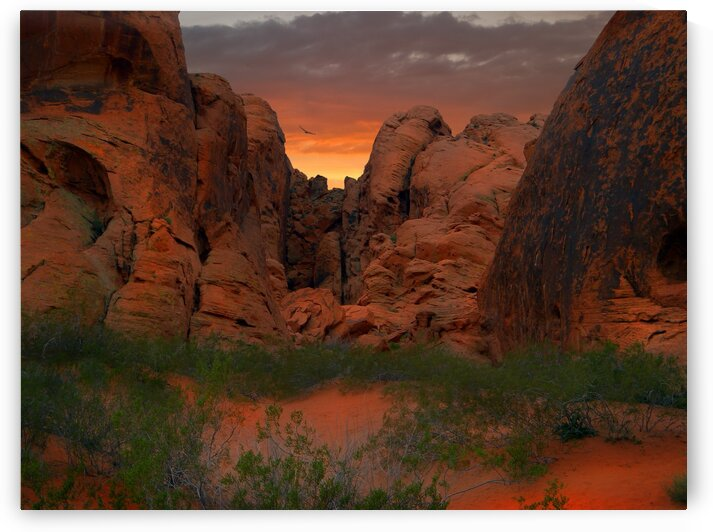 Red Rock Canyon  Sunset by Frank Wilson