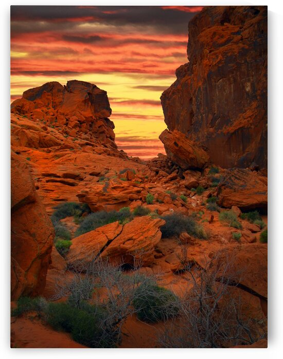 Red Sandstone Formations Valley Of Fire by Frank Wilson