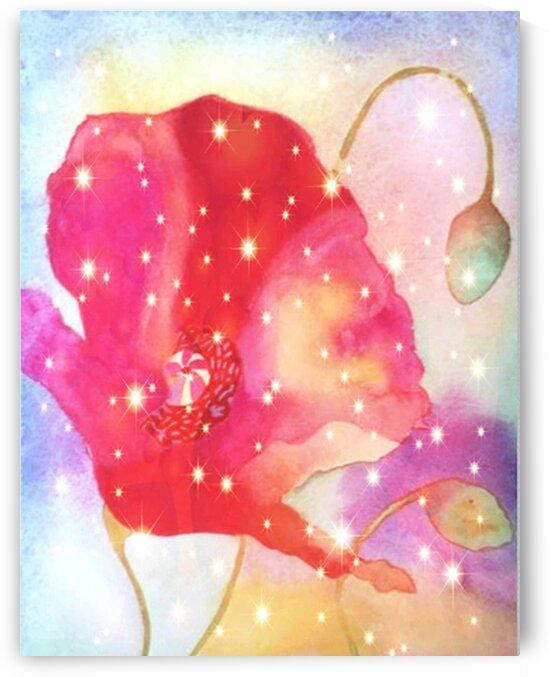 sparkles.v1 by Edward Dean Johnson