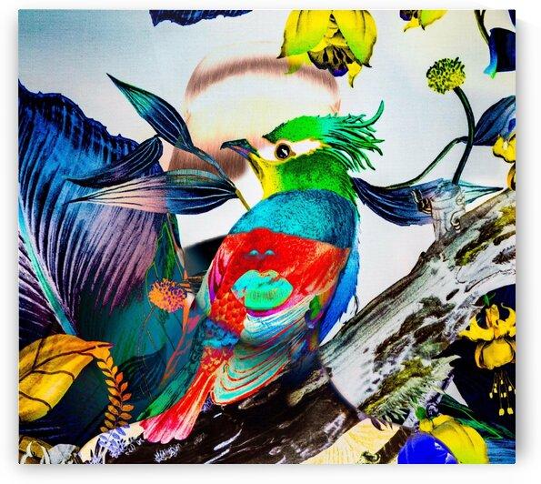LA FEMME OISEAU  by FANNY artiste peintre