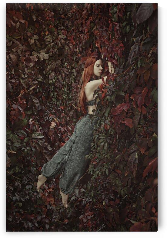 Secret Garden by Artmood Visualz