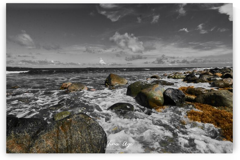 Limestone beach USVI by Tina Aye