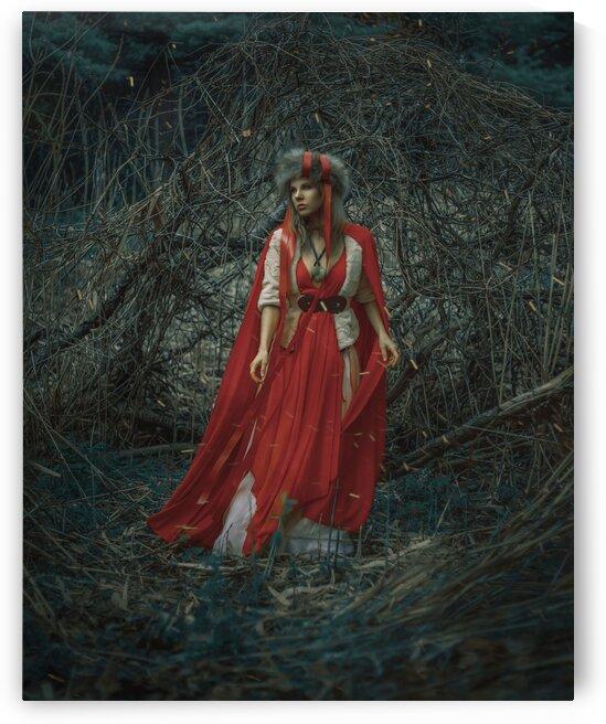 Black Forest by Artmood Visualz