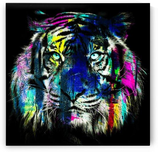 Tigre by FANNY artiste peintre