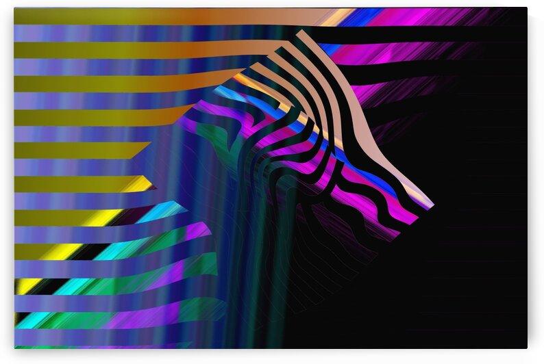zebra 2012141310s by Alyssa Banks