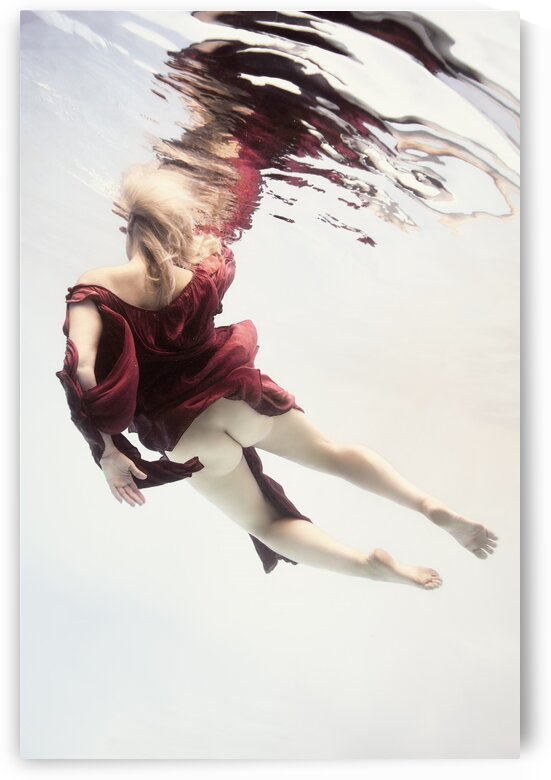 Gravity by Dmiry Laudin