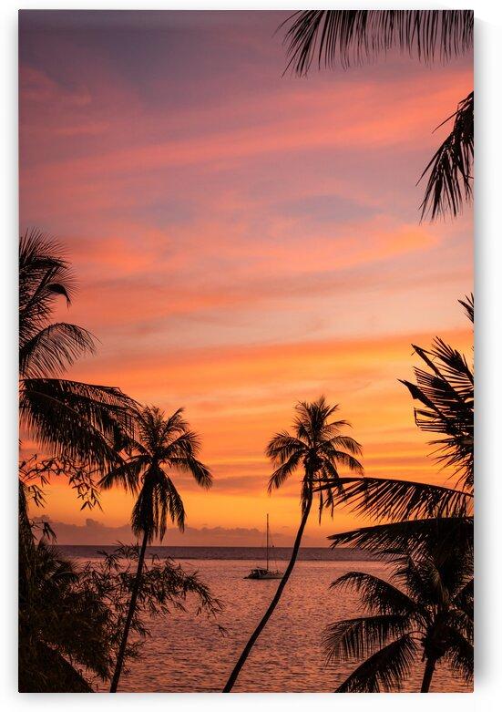 Tahiti - sunset framed by palm trees by Samantha Hemery